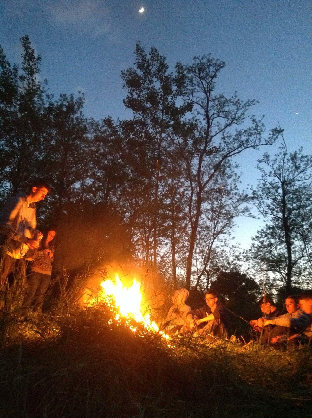 Natura, adolescenti, catastrofi (e i Survivors dell'Apocalisse)